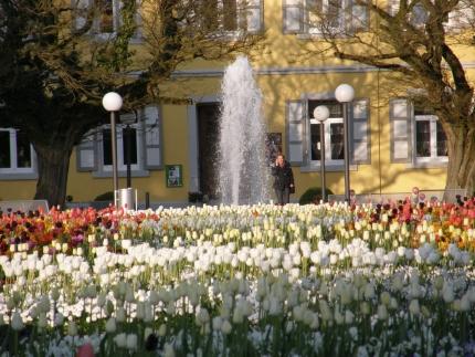 Brunnen vorm Ayurveda-Garden